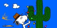Spike's cactus