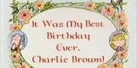 It Was My Best Birthday Ever, Charlie Brown