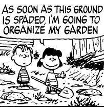 Lucy Linus Garden