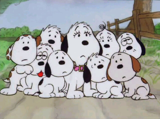 File:Snoopy Siblings (37).jpg
