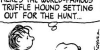 World Famous Truffle Hound