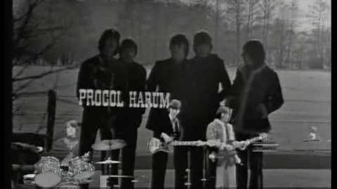 Procol Harum - Homburg 1967