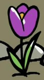 File:Flower in second stage.png