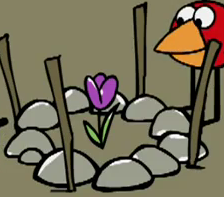 File:The flowers enclouserwhen not grown.png