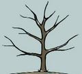 Thumbnail for version as of 15:34, November 20, 2012