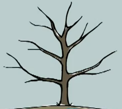 File:Peep's favourite tree.png