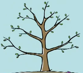 File:Peep's favourite tree growing1.png