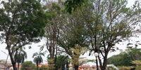 TPO Friendship Park