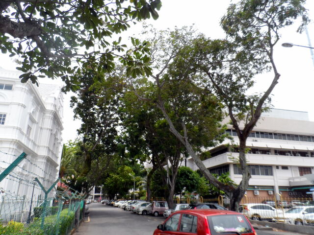 File:Duke Street, George Town, Penang.JPG