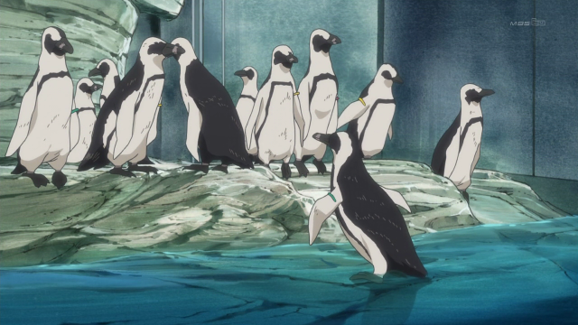 File:Real penguins.png