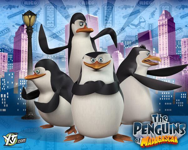 File:Penguins4.jpg