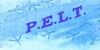 P.E.L.T./Transcript