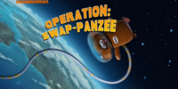 Operation: Swap-panzee