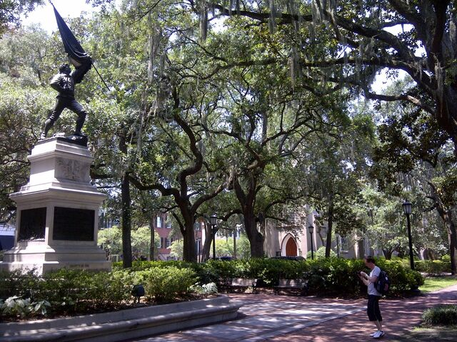 File:Savannah-20120726-00145.jpg