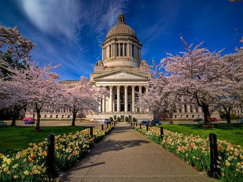 Washington State Capital -Olympia-20000000001556018-500x375