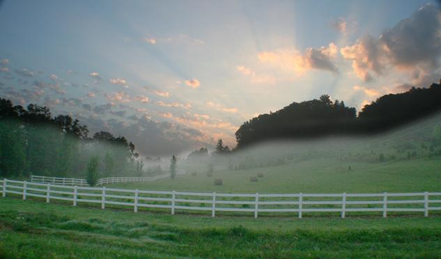 Horse farms lexington ky-5621