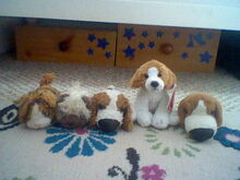 Dogs Family-1480197193