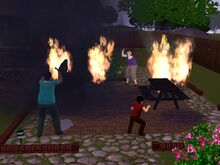 Sims House on Fire-0