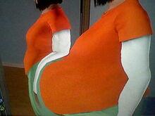 Eshana Lewis Big Fat Belly-1479927197