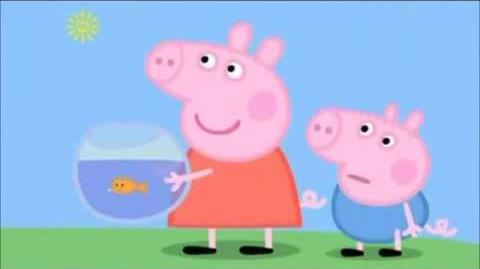 Daddy Pig agrees to go on the bus