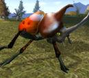 Pentastral Beetle King