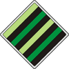 Southern Weyr Shield
