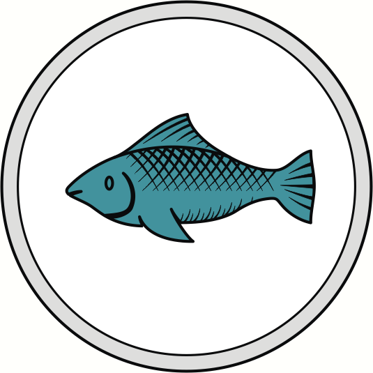 File:Fisher.PNG