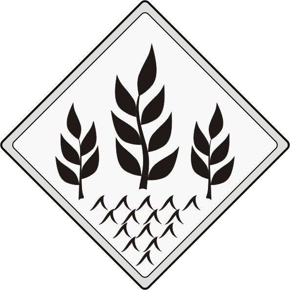 Telgar Weyr Shield