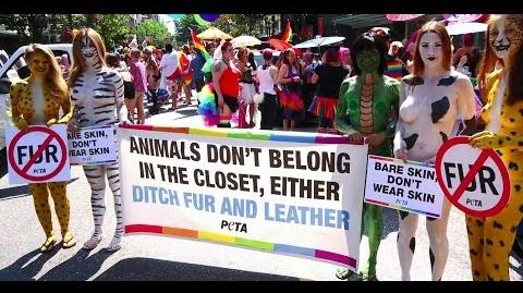 The Eight Secrets of How PETA Works