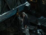 Ann Bonner Before Smaug's Attack