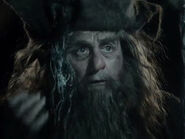Sylvester McCoy as Radagast DOS