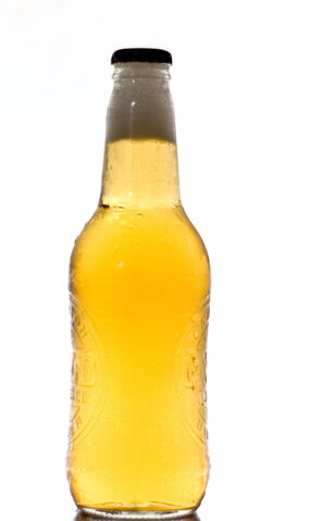 File:Beer bottle.jpg