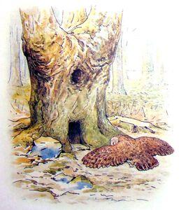 Hollowoaktree