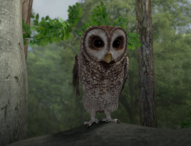 File:Mr-Old-Brown-Owl-From-Peter-Rabbit-Image.png