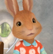 Peter-Rabbit-Sister-Twin0x4287