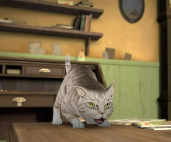 File:Ready-To-Pouns-Cat.jpg