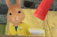 Peter-Rabbit-Mother-Worried