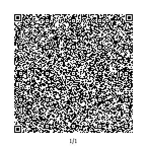 AR1.0QR