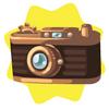Mechanical camera
