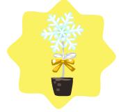 Homegrown Festive Flower