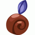 Snail fruit