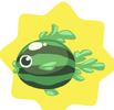 Watermelonfish