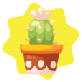 White potted cactus