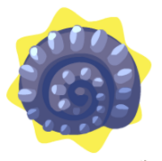 Blue fossil shell