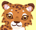 Leopard head 2