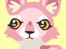 Coyote head 2