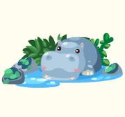 Sleepy hippo pond