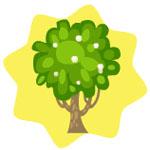 File:Strawberry Shortcake Tree.jpg