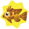Golden ram fish