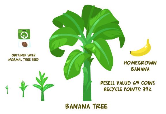 Banana tree summary